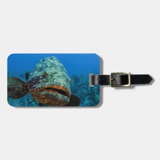 Atlantic Goliath Grouper Luggage Tags