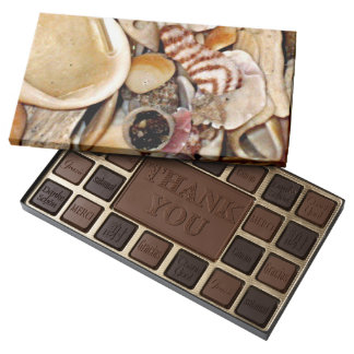 Atlantic Ocean Sea Shell Collection Assorted Chocolates