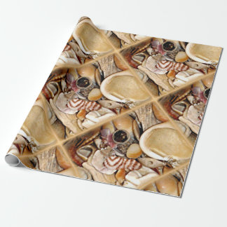 Atlantic Ocean Sea Shell Collection Wrapping Paper