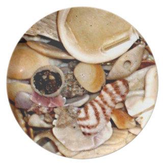 Atlantic Ocean Sea Shells Melamine Plate