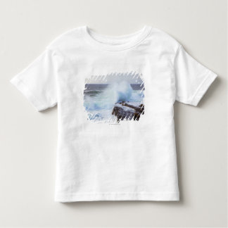 Atlantic Ocean Wave Crashing into Maine's Coast Toddler T-shirt