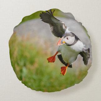 Atlantic Puffin bird flying round pillow