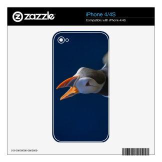 Atlantic Puffin (Fratercula arctica) 3 Skin For The iPhone 4