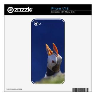 Atlantic Puffin (Fratercula arctica) 4 iPhone 4S Skin