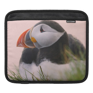 Atlantic Puffin (Fratercula arctica) 6 Sleeve For iPads