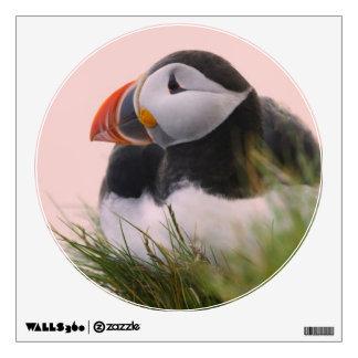 Atlantic Puffin (Fratercula arctica) 6 Wall Sticker