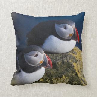 Atlantic Puffin (Fratercula arctica) 7 Throw Pillow