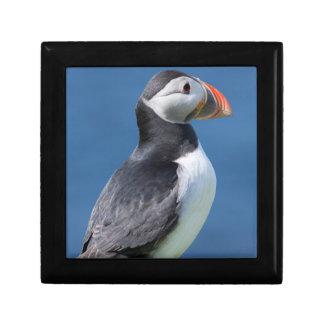 Atlantic Puffin (Fratercula Arctica) On Cliff Jewelry Box
