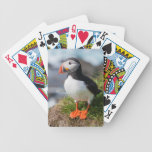 Atlantic Puffin Fratercula Arctica Bicycle Playing Cards