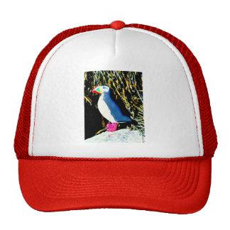 atlantic puffin hat