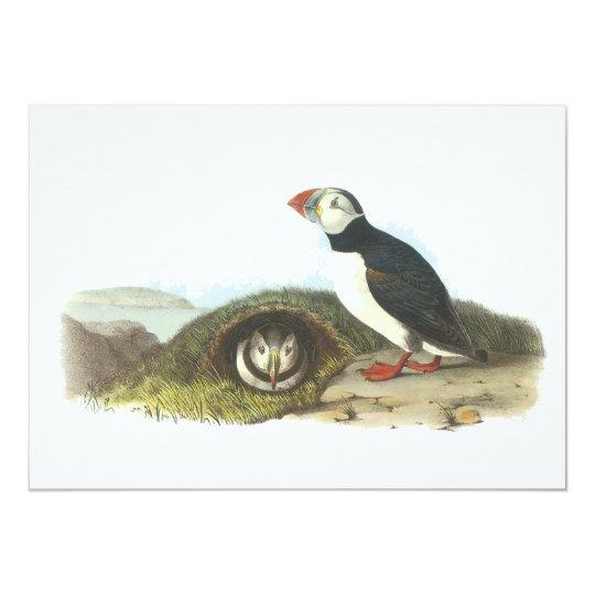 Atlantic Puffin, John Audubon Card