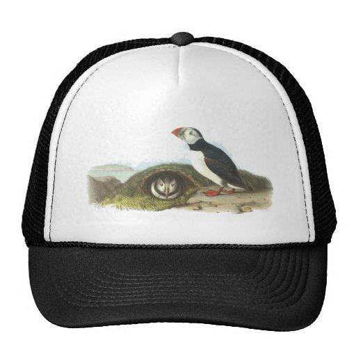 Atlantic Puffin, John Audubon Trucker Hat