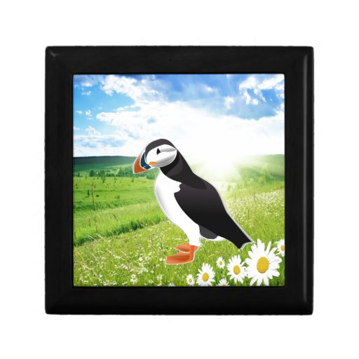 Atlantic Puffin Look forward to love Trinket Boxes