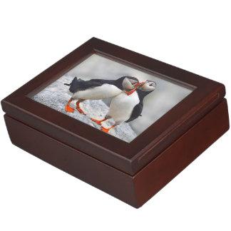 Atlantic Puffin Love Memory Box