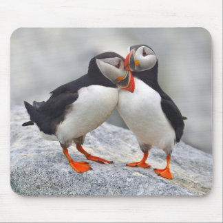 Atlantic Puffin Love Mouse Pad