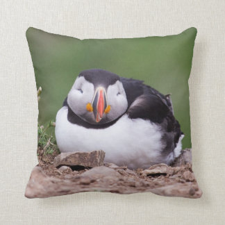 Atlantic Puffin MoJo Pillows