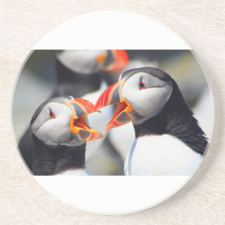 Atlantic Puffin mouths Coaster