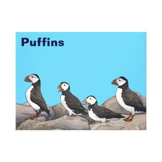 Atlantic Puffins Canvas Print