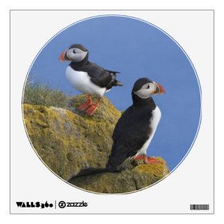 Atlantic Puffins (Fratercula arctica) on cliff Wall Sticker