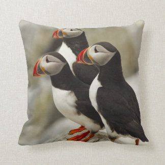 Atlantic Puffins on Machias Seal Island off the Throw Pillow