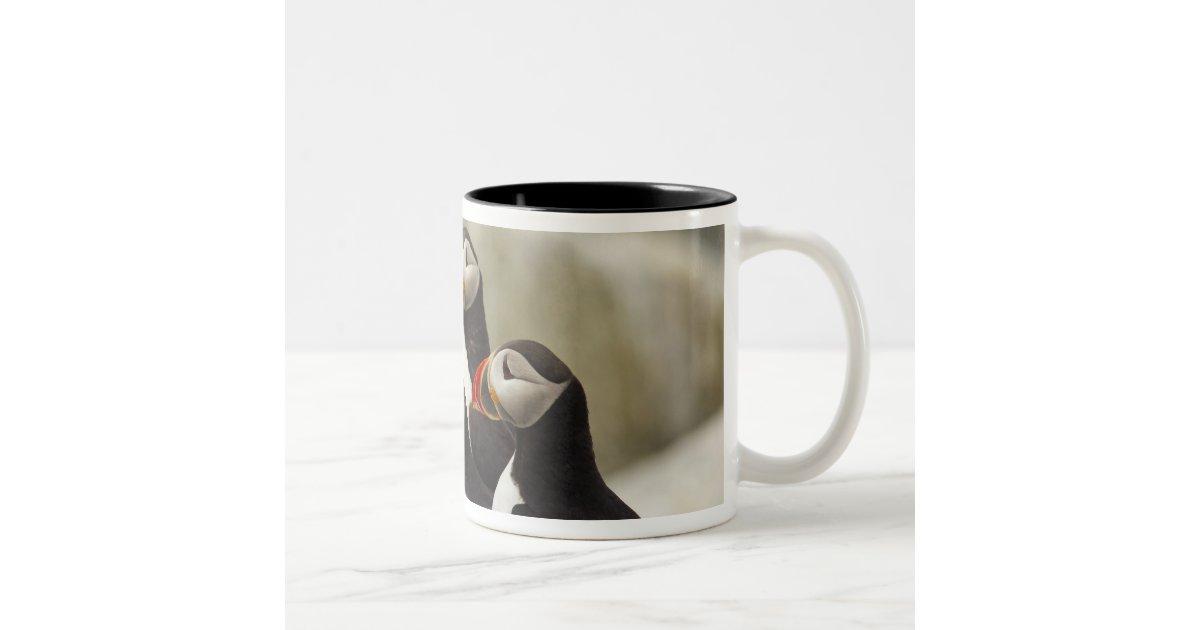 Atlantic Puffins On Machias Seal Island Off The Two Tone Coffee Mug Zazzle Com
