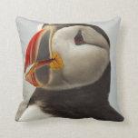 Atlantic Puffins on Machias Seal Island off Throw Pillows