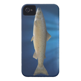 Atlantic Salmon- iPhone 4/4S Cover