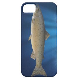 Atlantic Salmon- iPhone 5 Cover