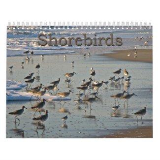 Atlantic Shorebirds Calendar