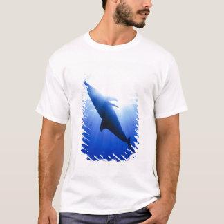 Atlantic spotted dolphins. Bimini, Bahamas. 2 T-Shirt
