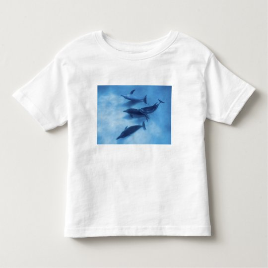 Atlantic spotted dolphins. Bimini, Bahamas. 7 Toddler T-shirt