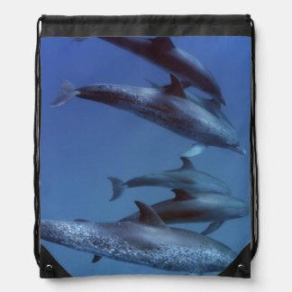 Atlantic spotted dolphins. Bimini, Bahamas. Drawstring Bag