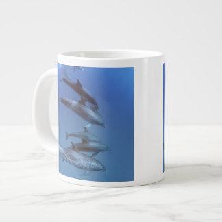 Atlantic spotted dolphins. Bimini, Bahamas. Giant Coffee Mug