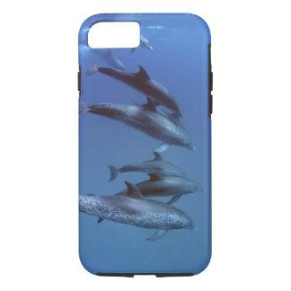 Atlantic spotted dolphins. Bimini, Bahamas. iPhone 8/7 Case