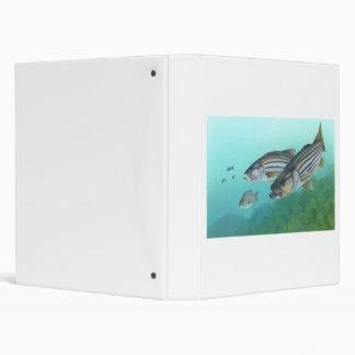 Atlantic Striped Bass Fish Morone Saxatilis 3 Ring Binder