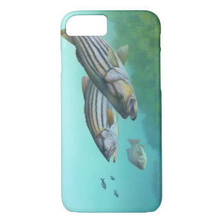Atlantic Striped Bass Fish Morone Saxatilis iPhone 7 Case