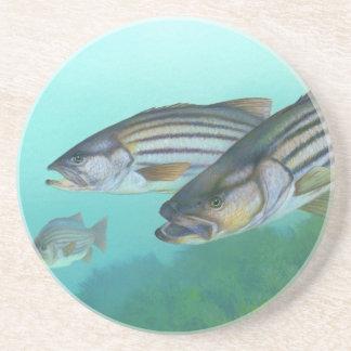 Atlantic Striped Bass Fish Morone Saxatilis Sandstone Coaster
