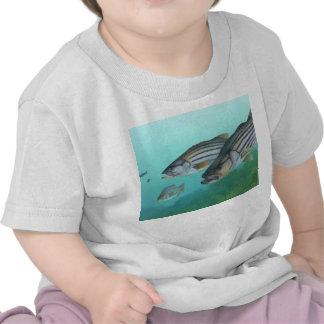 Atlantic Striped Bass Fish Morone Saxatilis Tee Shirt