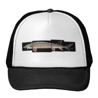 Atlantic Sturgeon - Acipenser oxyrinchus Mesh Hat