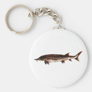 Atlantic Sturgeon - Acipenser oxyrinchus Keychain