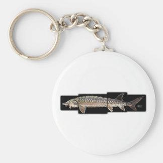 Atlantic Sturgeon - Acipenser oxyrinchus Key Chains