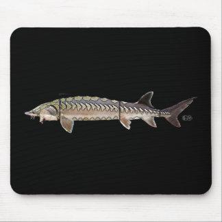 Atlantic Sturgeon - Acipenser oxyrinchus Mouse Pad