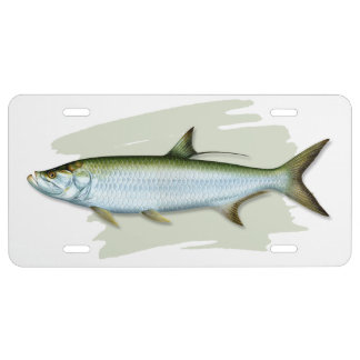 Atlantic Tarpon License Plate