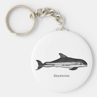 Atlantic White Sided Dolphin Key Chains