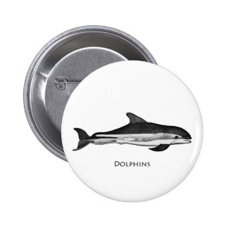 Atlantic White Sided Dolphin Pinback Button