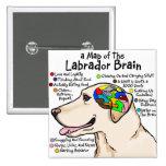 Atlas amarillo del cerebro de Labrador Pins