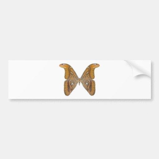 Atlas Butterfly Car Bumper Sticker