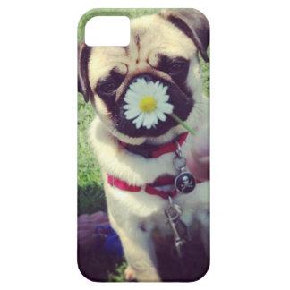 Atlas & Daisy iPhone SE/5/5s Case