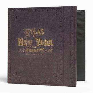 Atlas de la vecindad de Nueva York