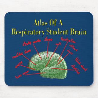 Atlas de los regalos respiratorios del cerebro del tapetes de ratones